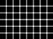 john_david_sottile_black_dot_illusion.jpg